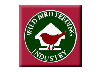 wb-feeding